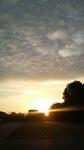 大阪城の日の出